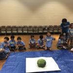Watermelon breaking game 3